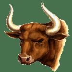 Jautis Zodiako ženklas