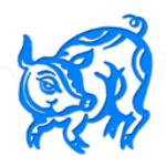 Kiaulė Zodiako ženklas
