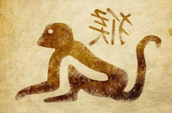 Beždžionė zodiako ženklo savybės