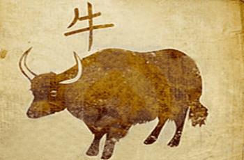 Jautis zodiako ženklo savybės