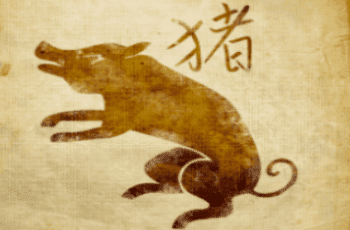 Kiaulė zodiako ženklo savybės