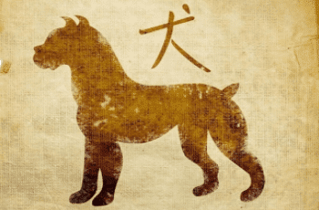 Šuo zodiako ženklo savybės