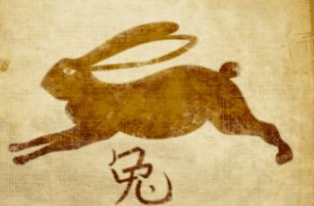 Triušis zodiako ženklo savybės