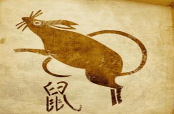Žiurkė zodiako ženklo savybės
